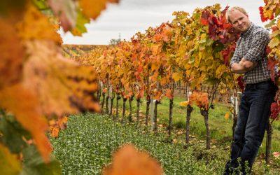 Weinbau BERND Nittnaus